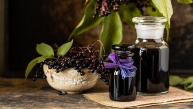 Photo of What Are The Advantages Of Black Elderberry?