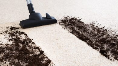 Photo of Two Approaches Involved in Deep Carpet Cleaning