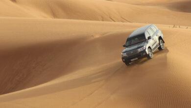 Photo of What Is Included in Desert Safari Dubai?