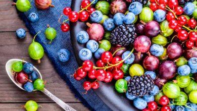 Photo of Top 8 Health Benefits of Resveratrol Supplement