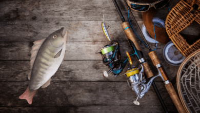 Photo of 10 Essential Items to Pack for A Fishing Trip