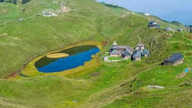 Photo of All you need to know about Goechala trek