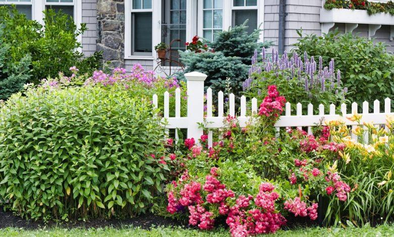 Essential Tips to Spring Gardening Tasks