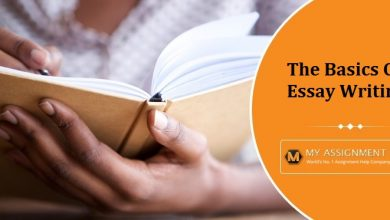 Photo of The Basics Of Essay Writing For Students