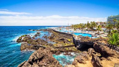 Photo of Your Ultimate Travel Guide to Tenerife
