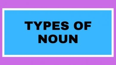 Photo of Types of Noun: An Easy Guide to the Different Forms