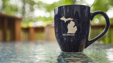Photo of 3 Things On What is Michigan Known For