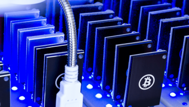 Photo of Bitcoin Hosting Features: Everything Explained In Detail